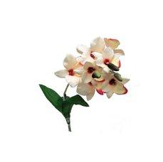Lucky Reptile Orchidej bílá, cca 40 cm