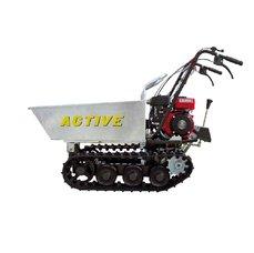 ACTIVE 1330 DMP